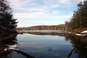 Reflections at Lake Louisa 2