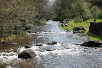 Doe River in Roan Moutain State Park